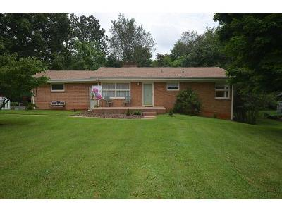 Johnson City Single Family Home For Sale: 918 Althea St.