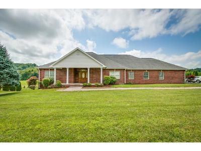 Single Family Home For Sale: 161 Sunnyfield Drive
