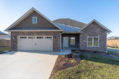 Single Family Home For Sale: 110 Rhett Way