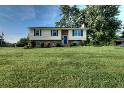 Jonesborough Single Family Home For Sale: 101 Mount Zion Church Road