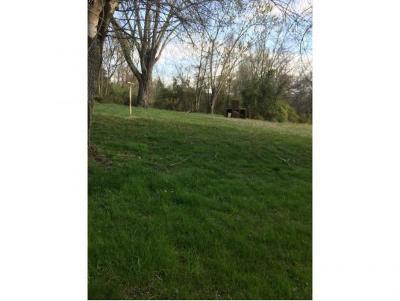 Residential Lots & Land For Sale: 2517 Bloomingdale Pike