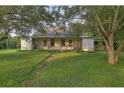 Single Family Home For Sale: 860 Ripley Island Rd
