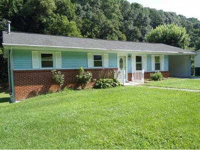 Hawkins County Single Family Home For Sale: 498 Burem