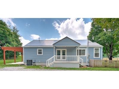 Single Family Home For Sale: 256 Elliott