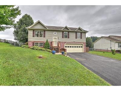 Jonesborough Single Family Home For Sale: 207 Maple Ridge