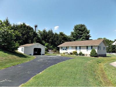 Elizabethton Single Family Home For Sale: 164 Dawn Drive