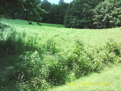 Residential Lots & Land For Sale: LOT 16 Eagle Ridge Road