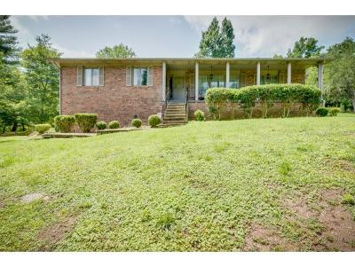 Single Family Home For Sale: 168 Pendleton Road