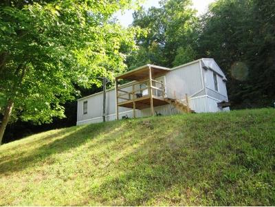 Johnson City Single Family Home For Sale: 178 Sarah Annie Drive