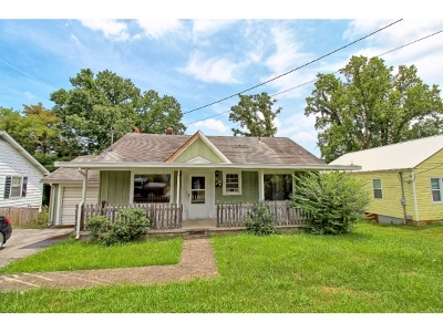 Kingsport Single Family Home For Sale: 317 Union Street
