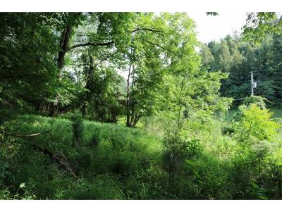 Residential Lots & Land For Sale: 251/265 Short Coal Chute