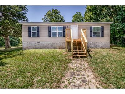 Greeneville TN Single Family Home For Sale: $79,900