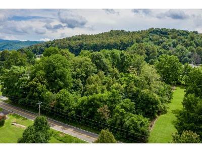Residential Lots & Land For Sale: tbd Laurels Road