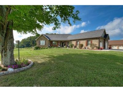 Washington-Tn County Single Family Home For Sale: 29 Shadden Springs