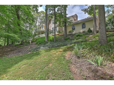 Unicoi Single Family Home For Sale: 1358 Suntree Rd