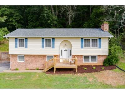 Kingsport Single Family Home For Sale: 305 Hidden Acres Rd
