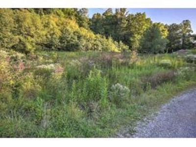 Residential Lots & Land For Sale: 219 Summer Pvt Dr