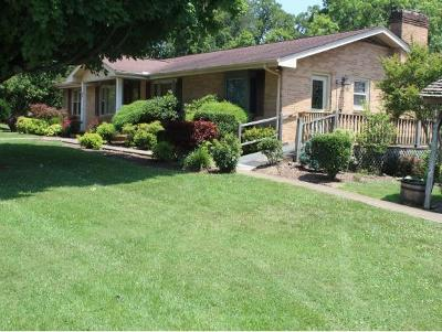 Kingsport Single Family Home For Sale: 157 Liberty Church Rd.