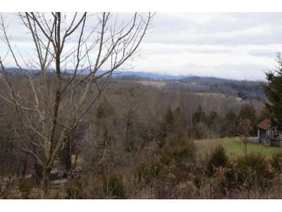 Residential Lots & Land For Sale: 201 Riley Dr. Lot 3
