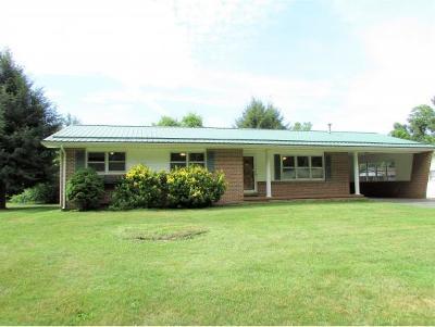 Elizabethton Single Family Home For Sale: 142 Creekbank Road
