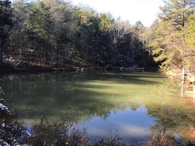 Greene County Residential Lots & Land For Sale: TBD Erin Lane