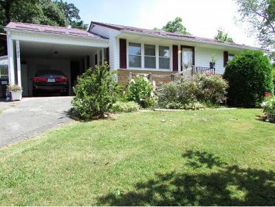 Elizabethton Single Family Home For Sale: 120 Hartley Road