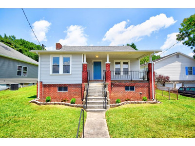 Single Family Home For Sale: 1009 Maple Street