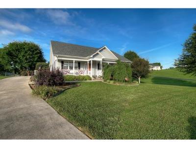 Jonesborough Single Family Home For Sale: 116 Pine Bark Drive