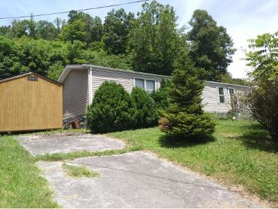 Elizabethton Single Family Home For Sale: 297 Russell Hill Rd