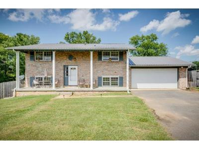 Washington-Tn County Single Family Home For Sale: 5106 North Roan Street