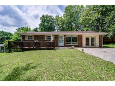 Johnson City Single Family Home For Sale: 1512 Bell Ridge Rd