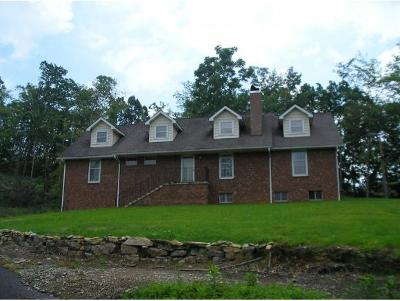 Unicoi Single Family Home For Sale: 120 Willow Pond Rd