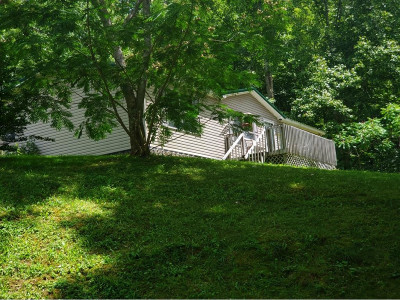 Roan Mountain Single Family Home For Sale: 449 Bear Branch