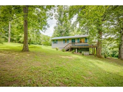 Rogersville Single Family Home For Sale: 196 Davis Drive