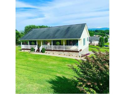 Greeneville Single Family Home For Sale: 1079 W. Vann Road