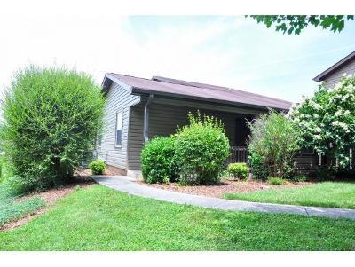 Johnson City Condo/Townhouse For Sale: 508 Pilgrim Court #C