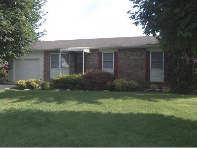 Greeneville Single Family Home For Sale: 1301 East Church Street