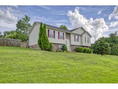 Jonesborough Single Family Home For Sale: 104 Jenny Lane