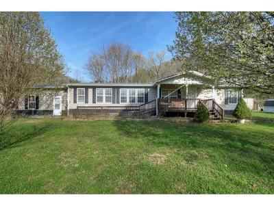 Erwin Single Family Home For Sale: 314 Pippin Hollow Road