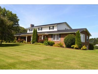 Chuckey Single Family Home For Sale: 75 Jim Short Lane