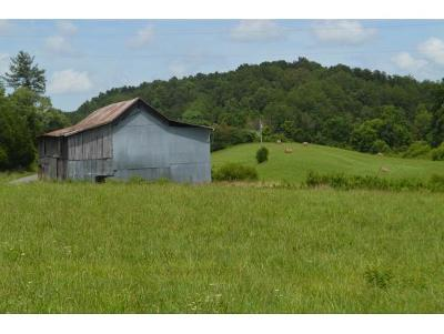 Hawkins County Residential Lots & Land For Sale: Tarpine Valley Rd.