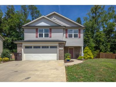 Piney Flats Single Family Home For Sale: 1076 Aberlea Valley Circle
