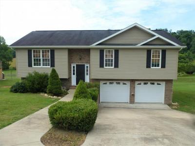 Hawkins County Single Family Home For Sale: 147 Hunters Run Lane