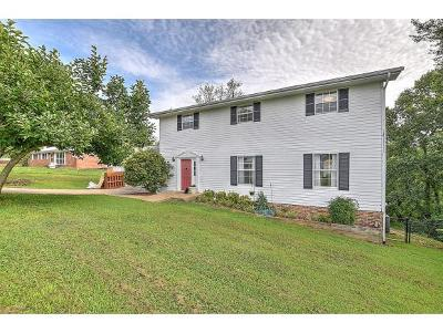 Greeneville Single Family Home For Sale: 923 Martingale Drive