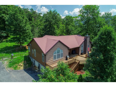 Hawkins County Single Family Home For Sale: 205 N Ha Butcher Valley Road