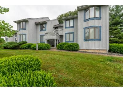 Abingdon Condo/Townhouse For Sale: 100 Wonderland Drive #2B