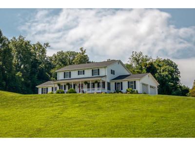 Bristol VA Single Family Home For Sale: $325,000