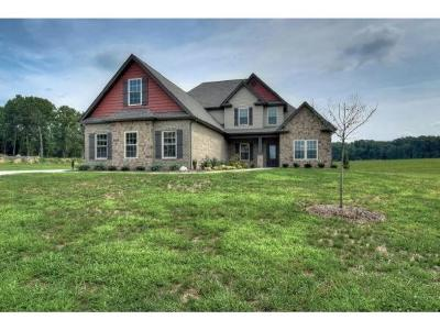 Greeneville Single Family Home For Sale: 110 Glenfield Trail