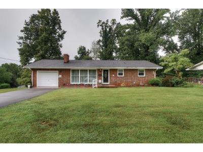 Johnson City Single Family Home For Sale: 505 Longview Dr