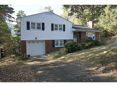 Erwin Single Family Home For Sale: 733 Hill St